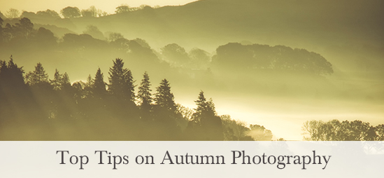 Top Tips on Autumn Photography