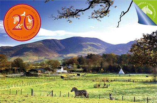 Lake District Wildlife Park's beautiful location
